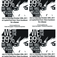 Occupy Boise Fliers